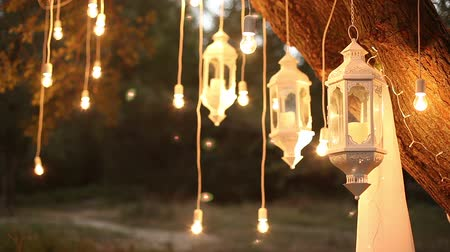 Decorative antique edison style filament light bulbs hanging in the woods, glass lantern, lamp decoration garden at night, magic forest, light bulbs and glow hang on the tree in the forest Wideo