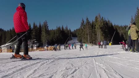 кабель : skiers come from the snowy mountains, a ski lift carries people up on the mountain, Skiers descend from the snowy mountains, people are skiing, high spruces on the hillside, sunny day