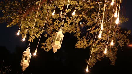 stilize : Decorative antique edison style filament light bulbs hanging in the woods, glass lantern, lamp decoration garden at night, magic forest, light bulbs and glow hang on the tree in the forest Stok Video