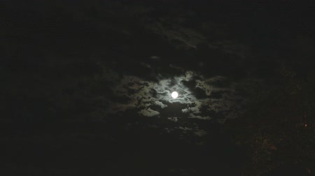 lunar : Full moon in the night sky, bright moon, night sky, the motion of clouds in the night sky against the background of a bright moon Stock Footage