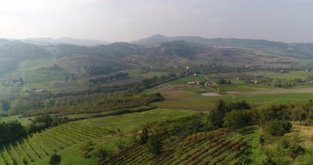 pincészet : Valley with vineyards, Vineyards, a suggestive aerial video over a vineyards in an amazing tuscan landscape, panorama, suny day