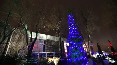 освещенный : Exterior of modern house or restaurant, the Christmas lights are lit on the trees, in the night sky, camera movement, tree decorated with Christmas lights, tall tree lights, view from below Стоковые видеозаписи