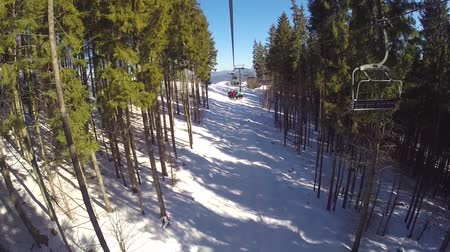 winda : People are skiing, high spruces on the hillside, sunny day