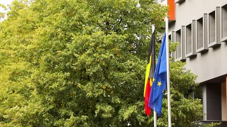 federální : The european flag and the national german flag of germany with trees and building in the background, dutch and european flags