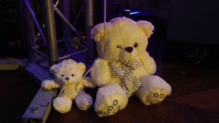 peluş : Teddy bears sitting in a row, white teddy bears, helium balloons, cute teddy bear with a butterfly on her neck, soft toy, Interior halls for childrens birthday, a gift, a room, indoors, Teddy bear