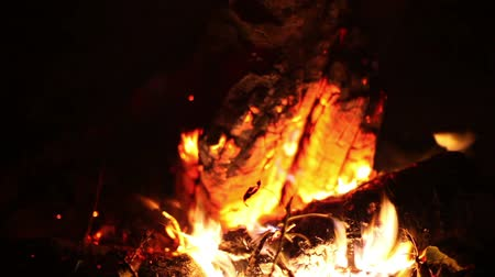 into the camera : Big night bonfire burns in a clearing in the forest, fire burn ends