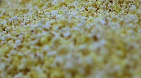 tiyatro : Macro shot of a popcorn texture of salted and unsalted corn Stok Video