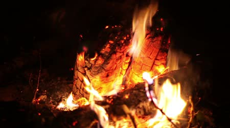освещенный : Big night bonfire burns in a clearing in the forest, fire burn ends