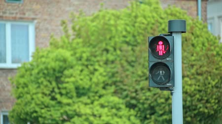 gyalogos : Red and Green color Pedestrian traffic light Stock mozgókép