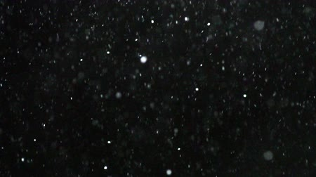 queda de neve : Winter snowfall. Snow Slow motion filmed at 100fps outdoors with studio lighting