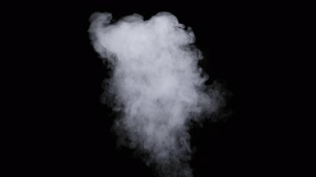 fuvalom : Realistic dry smoke clouds fog overlay perfect for compositing into your shots. Simply drop it in and change its blending mode to screen or add.