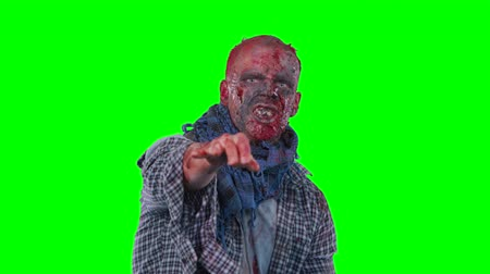 zalim : Halloween theme horrible scary zombie in clothes dance and want to catch you isolated over green screen background