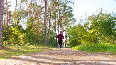 perspiration : A young man running in the forest. Medium shot