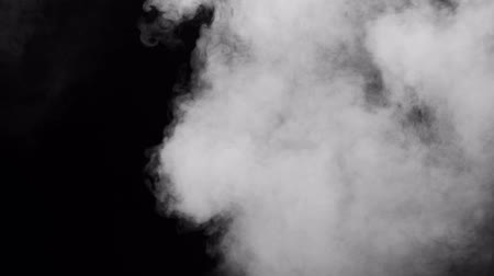 füstös : White clouds of vapor smoke are isolated on a black background. Gas explodes, swirl and dances in space. A magic fog dust texture effect that can be used by overlay and changing their transparency.