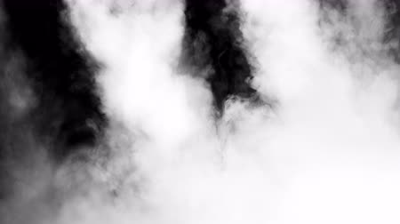 ethereal : White clouds of vapor smoke are isolated on a black background. Gas explodes, swirl and dances in space. A magic fog dust texture effect that can be used by overlay and changing their transparency.