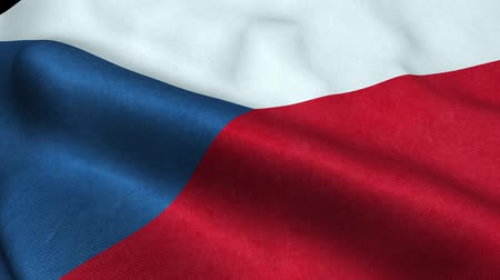 Czech Republic Flag Seamless Looping Waving Animation Stock Footage