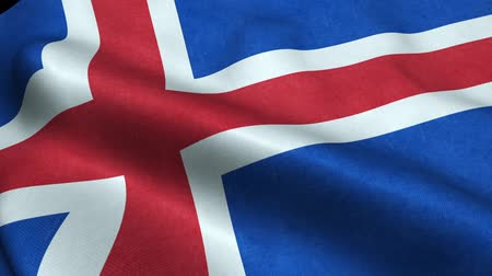 godło : Iceland Flag Seamless Looping Waving Animation Wideo