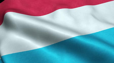 Luxembourg Flag Seamless Looping Waving Animation Stock Footage