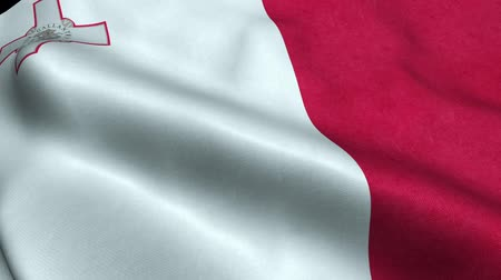 Malta Flag Seamless Looping Waving Animation Filmati Stock