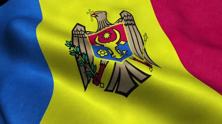 godło : Moldova Flag Seamless Looping Waving Animation