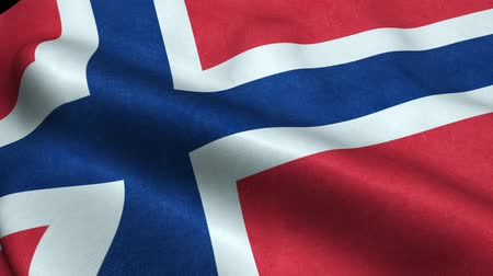 Norway Flag Seamless Looping Waving Animation