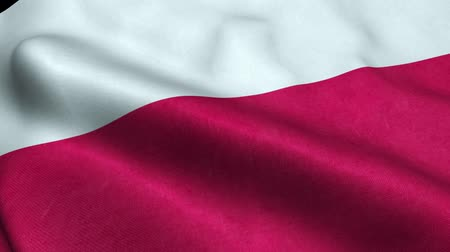 Poland Flag Seamless Looping Waving Animation Stock Footage