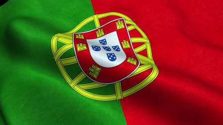 Portugal Flag Seamless Looping Waving Animation Stock Footage