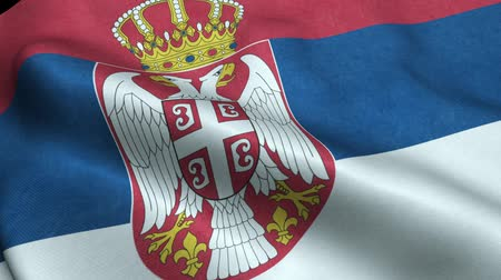 Serbia Flag Seamless Looping Waving Animation Stock Footage