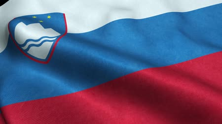 ljubljana : Slovenia Flag Seamless Looping Waving Animation Stock Footage