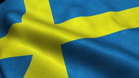 godło : Sweden Flag Seamless Looping Waving Animation