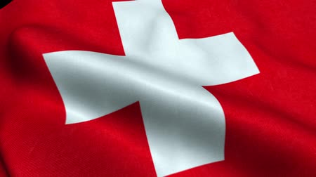 Switzerland Flag Seamless Looping Waving Animation Stock Footage