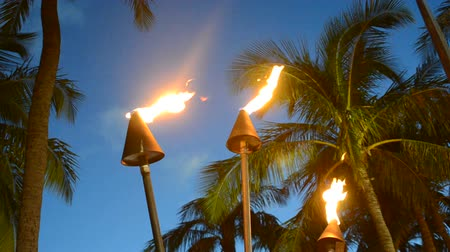 trópicos : Vacation Image Of Hawaiian Tiki Torches At Sunset Vídeos