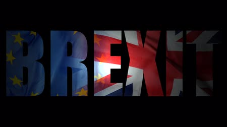 união europeia : An Animation Representing The British EU Referendum (Brexit) Stock Footage