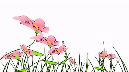 jardim : drawing flowers animation