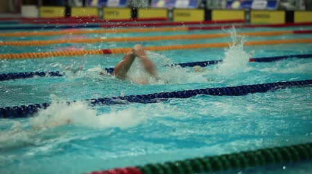 soutěže : competing in a swimming race