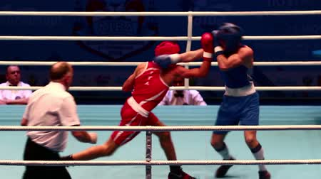 Boxing hard battle with sound St. Petersburg, Russia, November 23, 2016 AIBA Youth World Boxing Championships men heavy 64 kg. Boxing match between: RED-Tabal S., Sweden, BLUE -Polanco E., Dominicana Stock mozgókép
