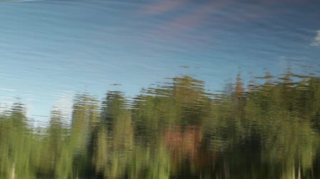 inverted : forest and blue sky reflection in the river abstract background