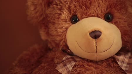peluş : brown teddy bear,  soft toy, portrait cute teddy bear