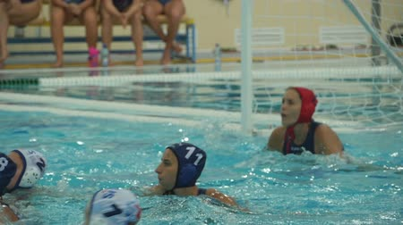 вратарь : Water polo team game with a ball in the swimming