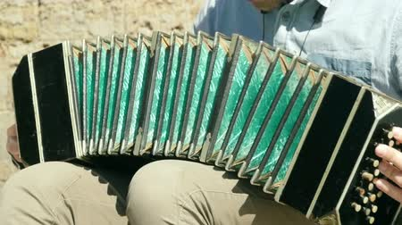 musical intrument : bandoneon musical instrument of the kind of hand harmonics.