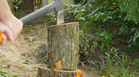 hatchet : lumberjack holds with hands and chops wood