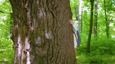 hippi : Girl hugs the big tree in the forest, love for nature. Steadicam shot, camera flying around the tree.