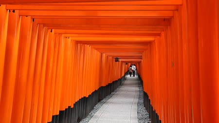 лиса : People walking on pathway under tunnel of Torii gate at Fushimi Inari Shrine in Kyoto, Japan