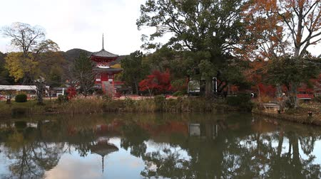 red maple : Daikakuji Temple in Kyoto, Japan during autumn season.