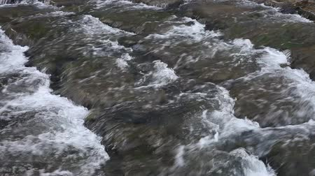 Close up of a shallow stream. Stock Footage