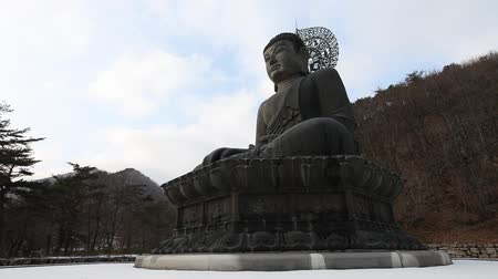 Bronze Buddha of Sinheungsa Temple in Gangwon, Korea. The statue represents the crucial wish of the Korean people for the reunification of the divided country.