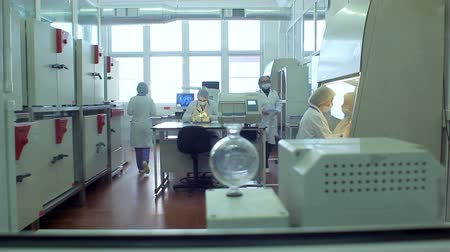 laboratório : Laboratory people. Scientists working in chemistry laboratory. Biologists team working in laboratory. Modern science laboratory. Researchers working with laboratory equipment. Scientific research