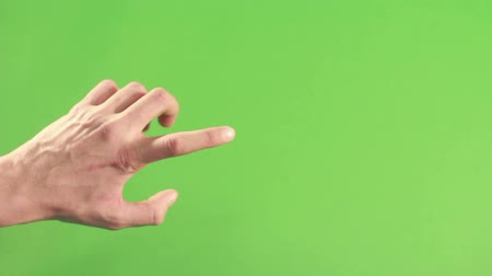 spite : Human hand isolated on green screen. Person hand on green background. Man in chroma key studio pointing and making gesture. Left hand in green studio isolated.