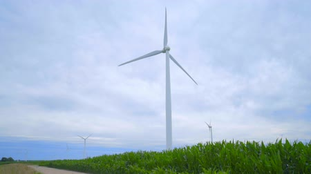 устойчивость : Wind turbines on green field. Rural landscape with wind generators. Renewable energy resource of future. Group of wind turbines generating electricity. Alternative energy concept Стоковые видеозаписи