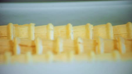 row : Waffle cone moving on production line. Sweet food production. Food manufacturing. Close up of waffle ice cream production. Food processing industry. Modern food factory. Ice cream manufacturing Stock Footage